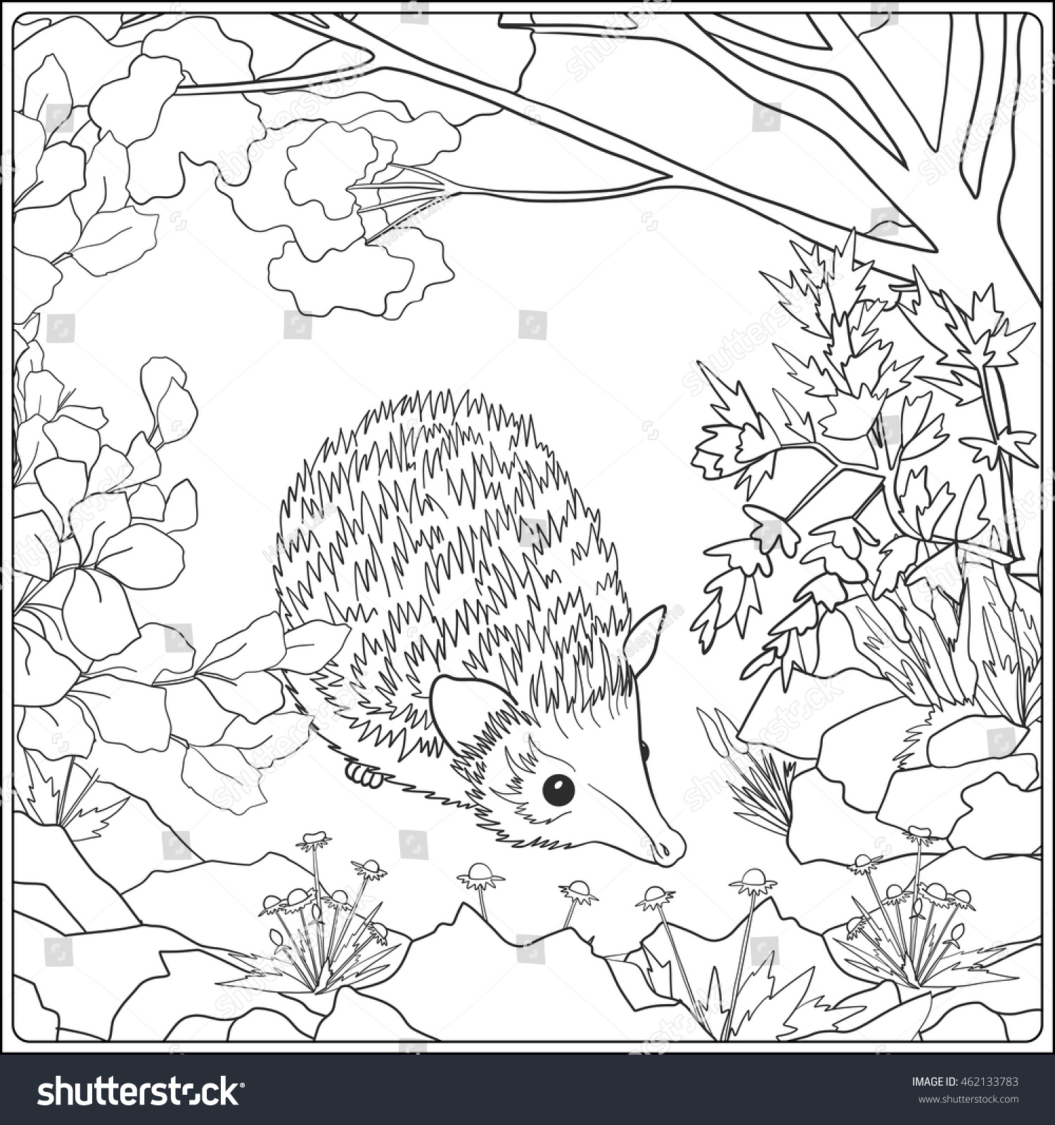 animal coloring pages for older children virtren com