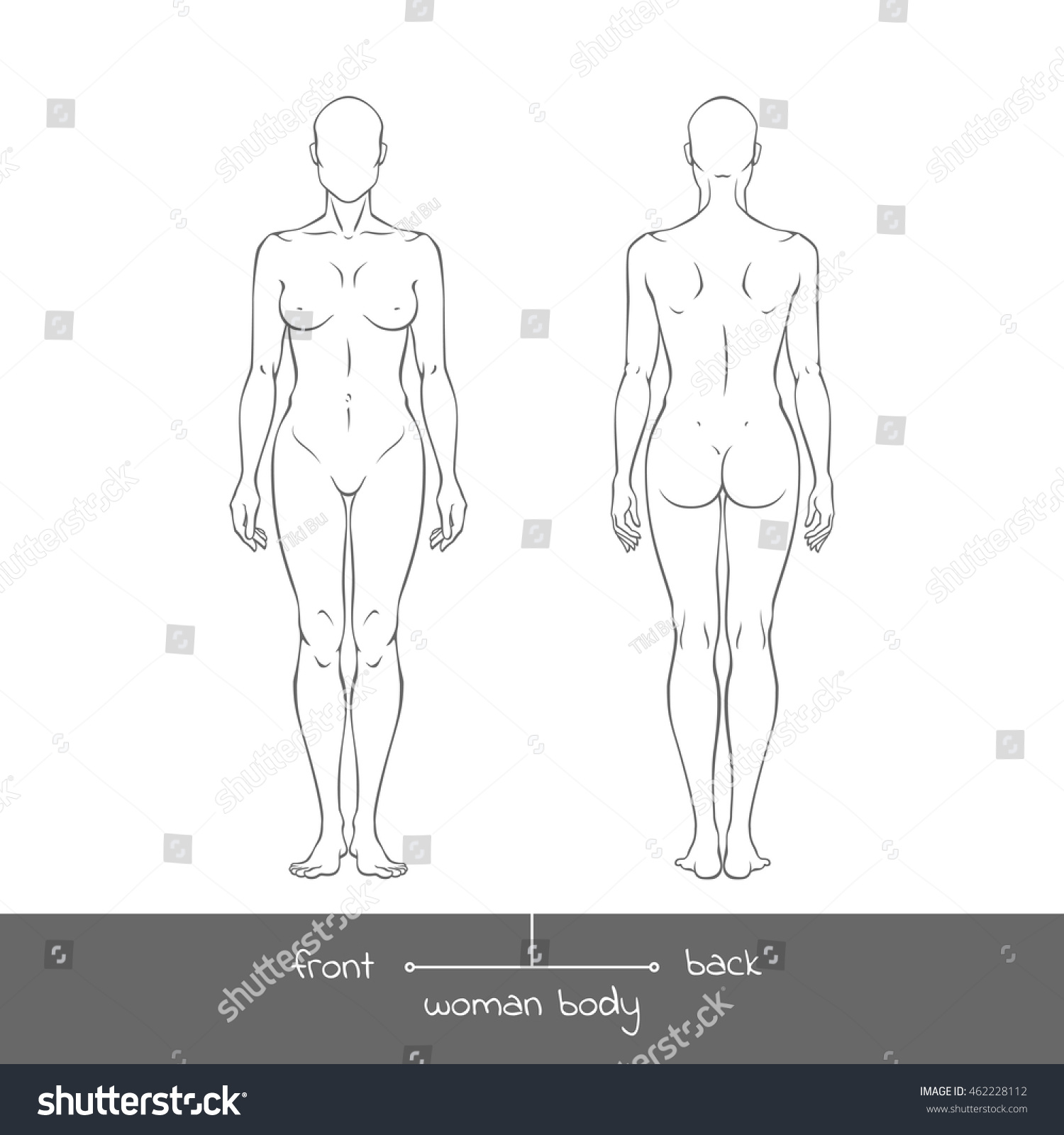 dab389737 Muscular young woman from front and back view. Anatomy of Healthy female  body shapes outline vector illustration with the inscription  front and  back. Human ...