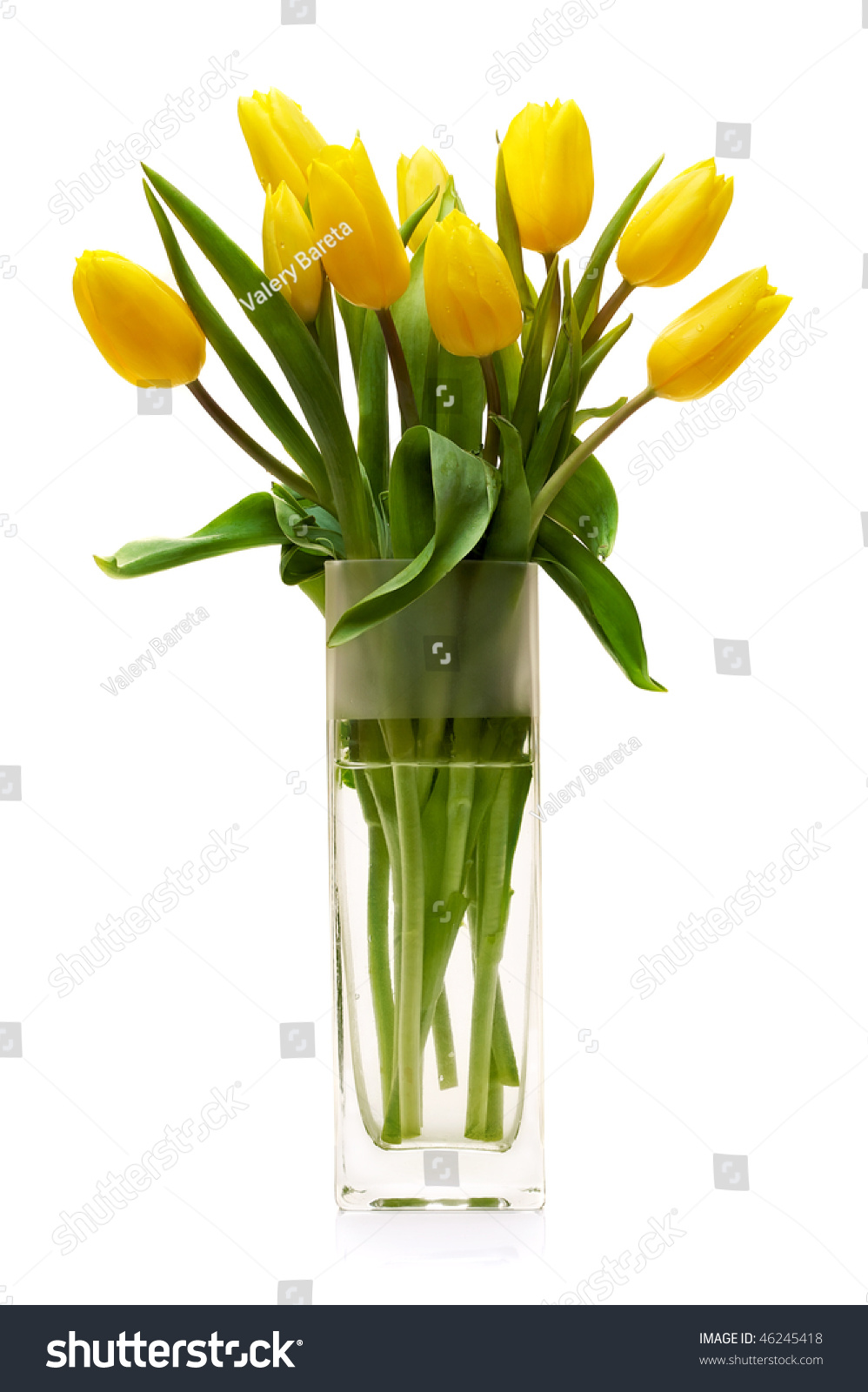 Bouquet Of Yellow Tulips In A Glass Vase On A White Background Stock Photo 46245418 Shutterstock