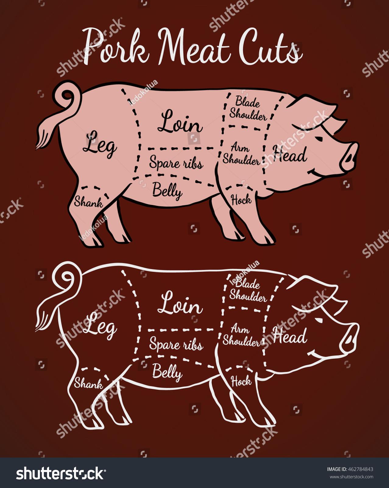 Cuts Pork Poster Butcher Diagram Scheme Stock Vector 462784843 ...