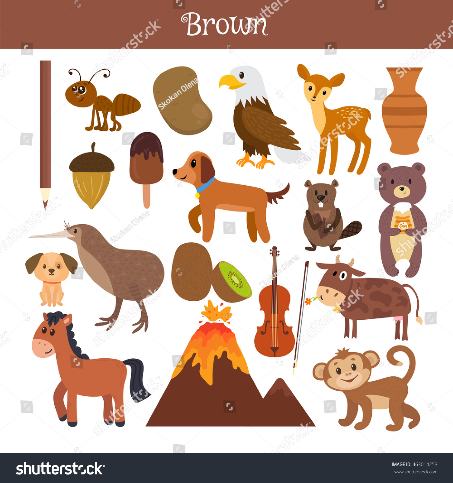 Brown Learn the color Education set Illustration of primary colors Vector illustration