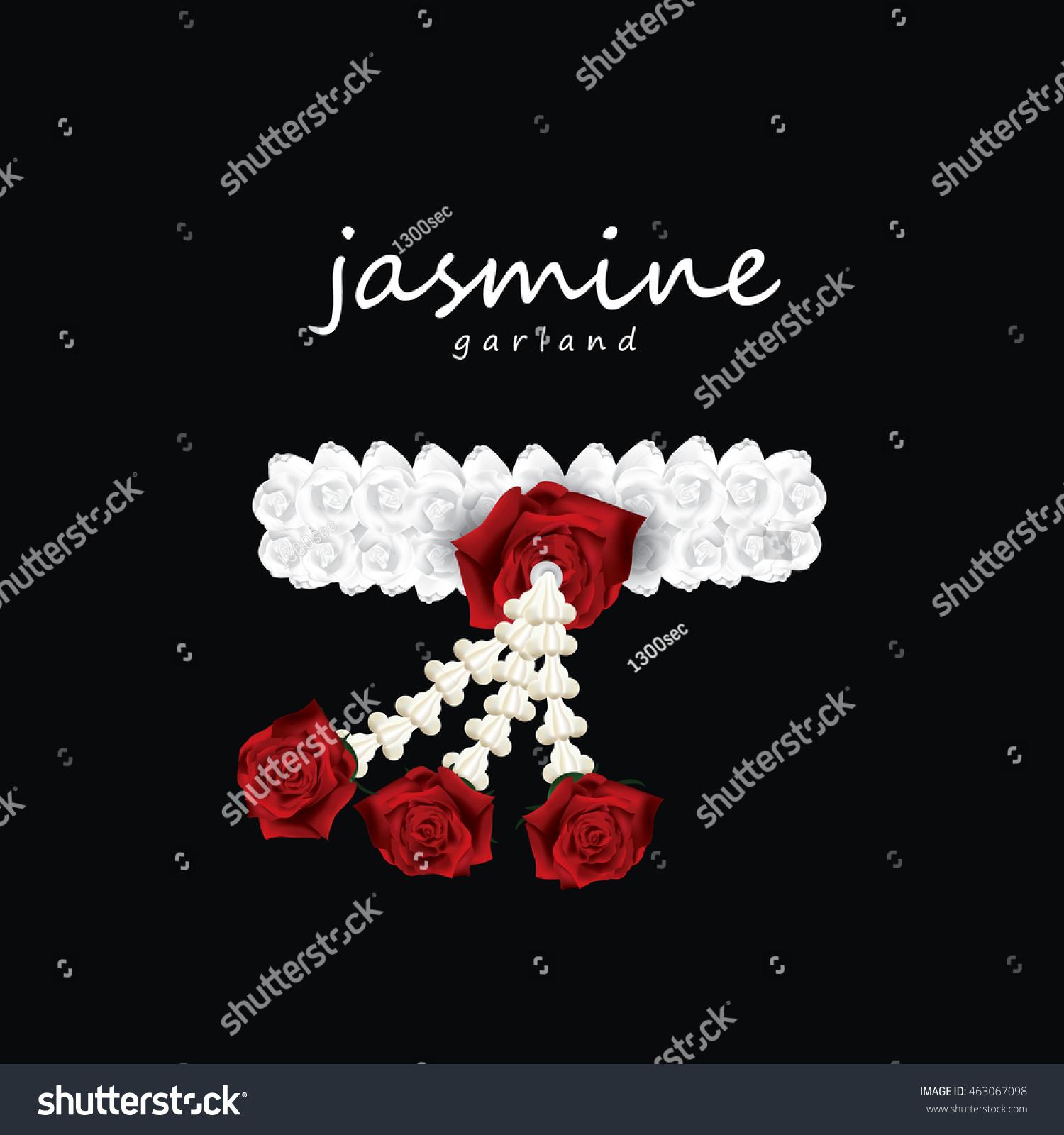 Jasmine Flower Garland Vector Illustration Stock Vector Royalty