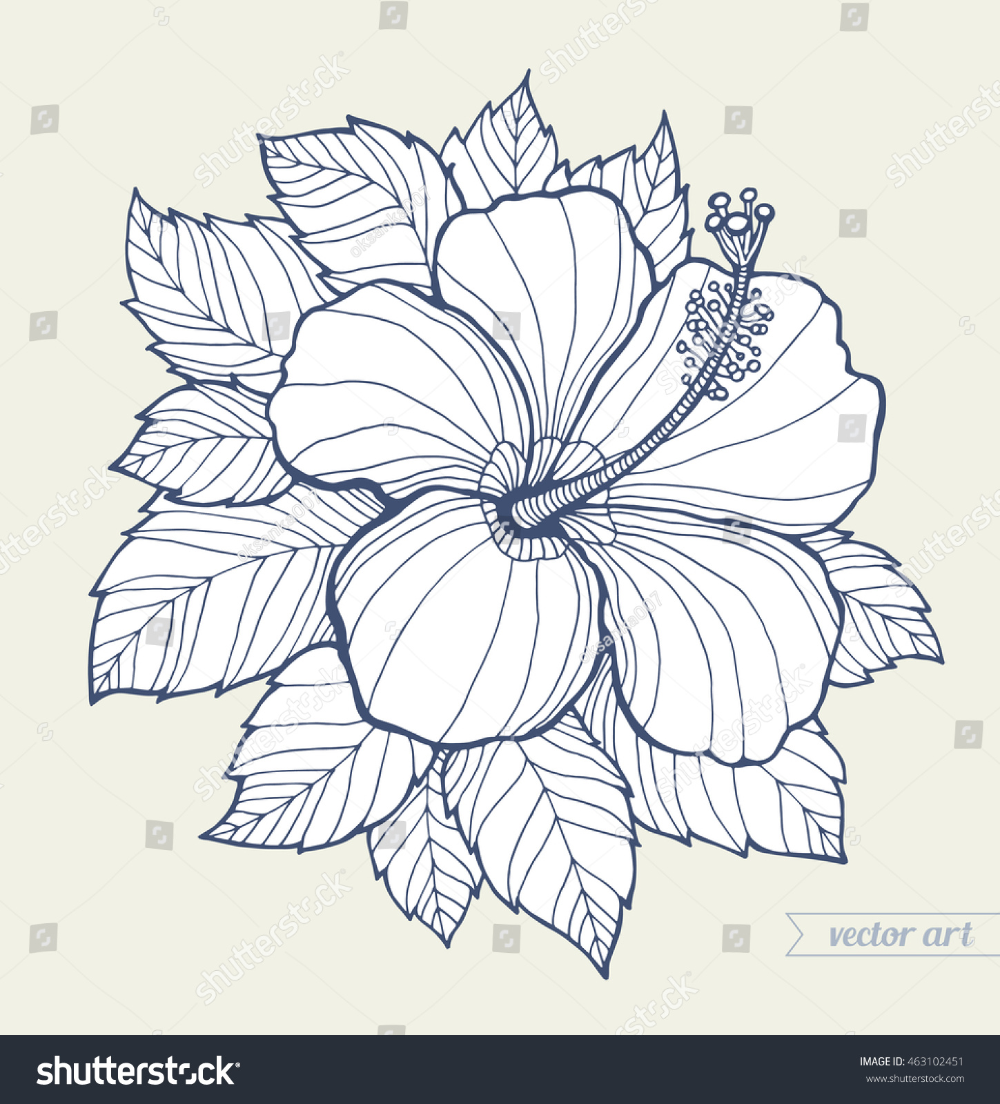 Royalty Free Hawaii Hibiscus Flower And Leaves 463102451 Stock