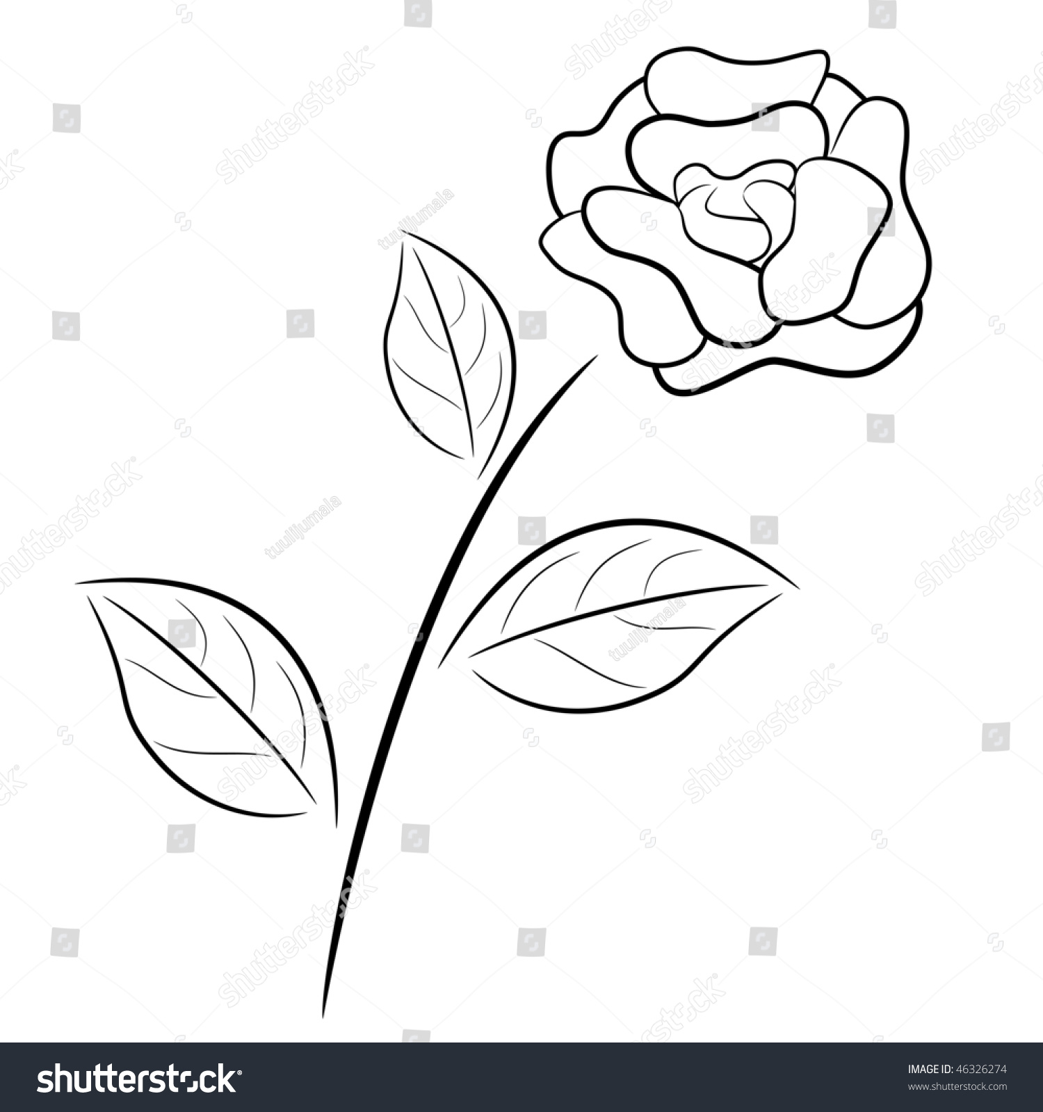 White Rose Outline