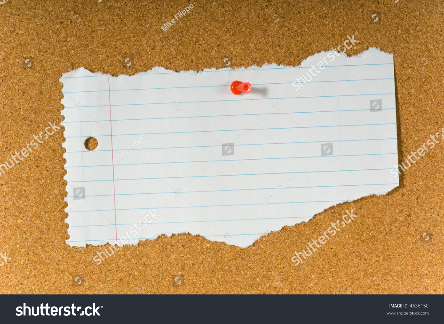 blank torn notebook paper on cork stock photo (edit now) 4636150
