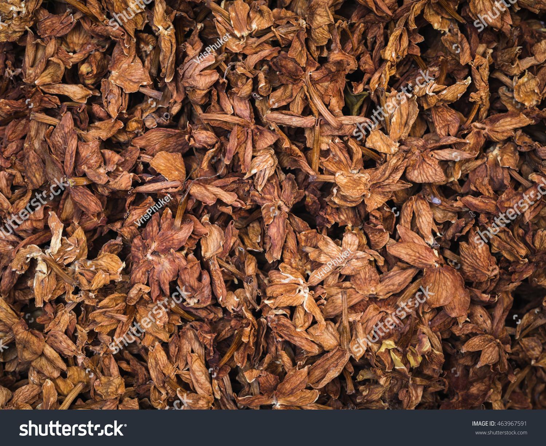 Dry Jasmine Flowers Background Stock Photo Edit Now 463967591