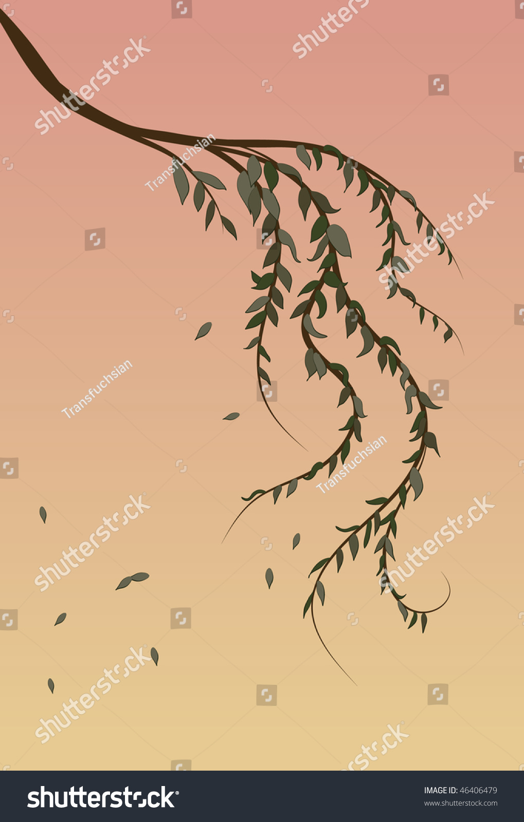 Weeping Willow Tree Branch Background Stock Vector (Royalty Free ...