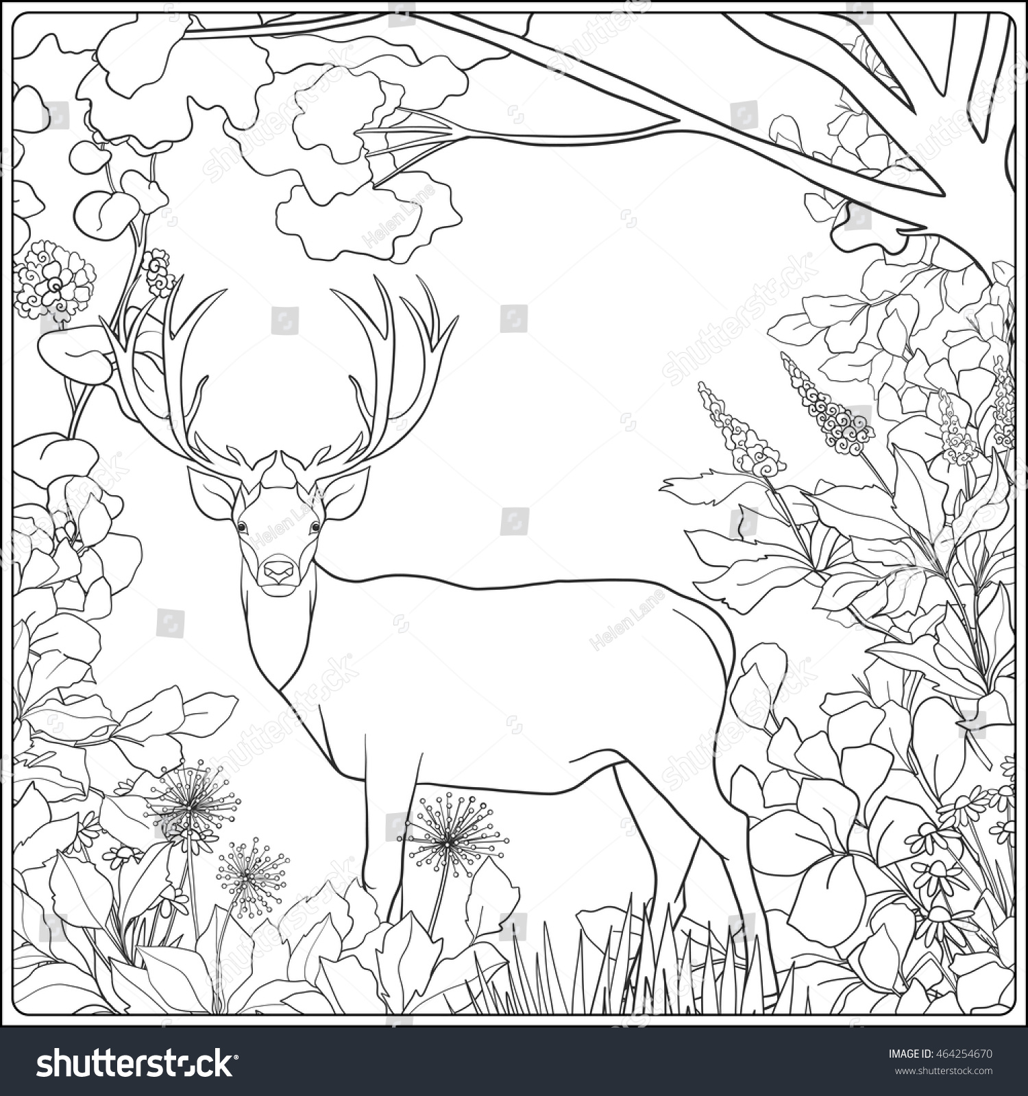 coloring page deer forest coloring book stock vector 464254670