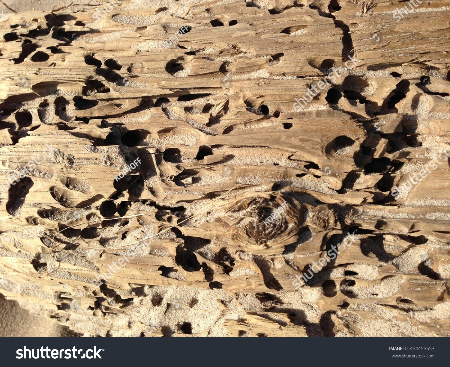 Etched Wooden Block Washed Out On Stock Photo Edit Now 464455553