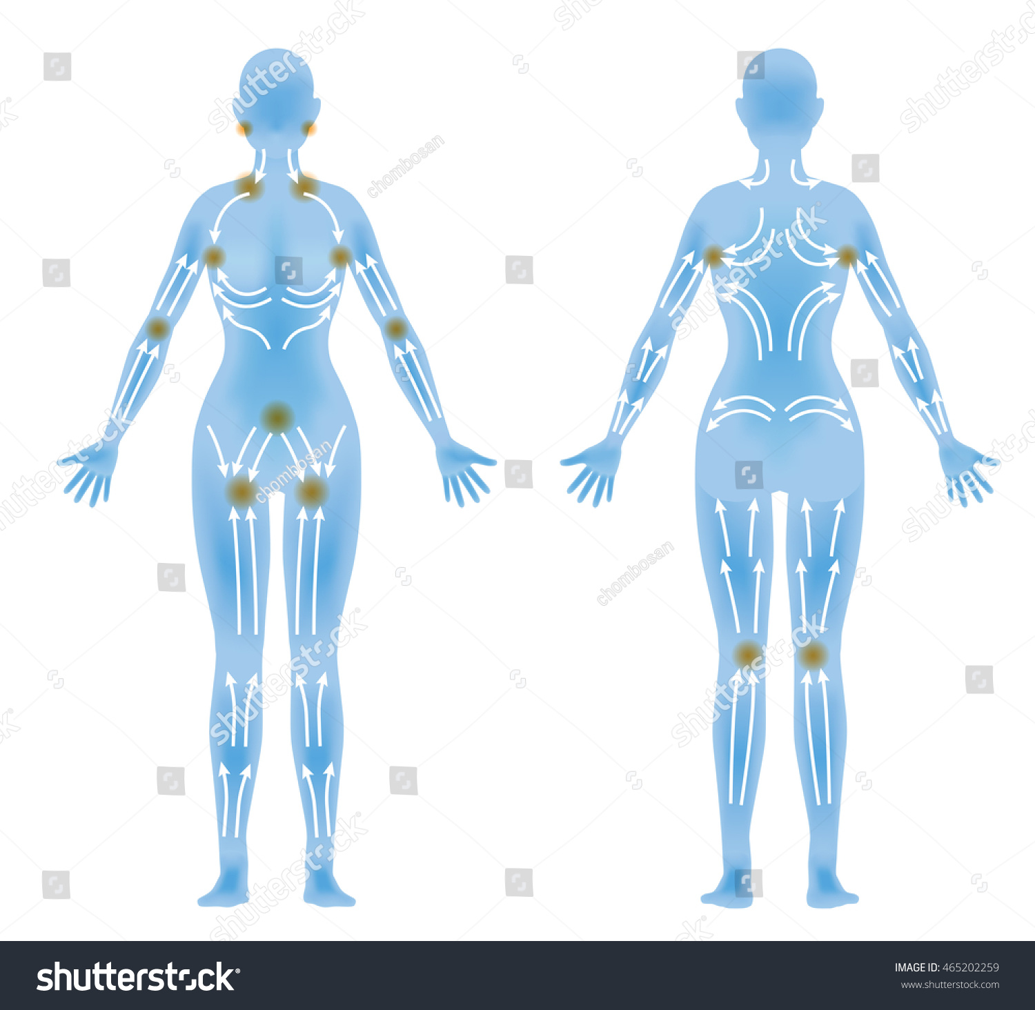 Womans Body Front Back Lymphatic Massage Stock Vector Royalty Free