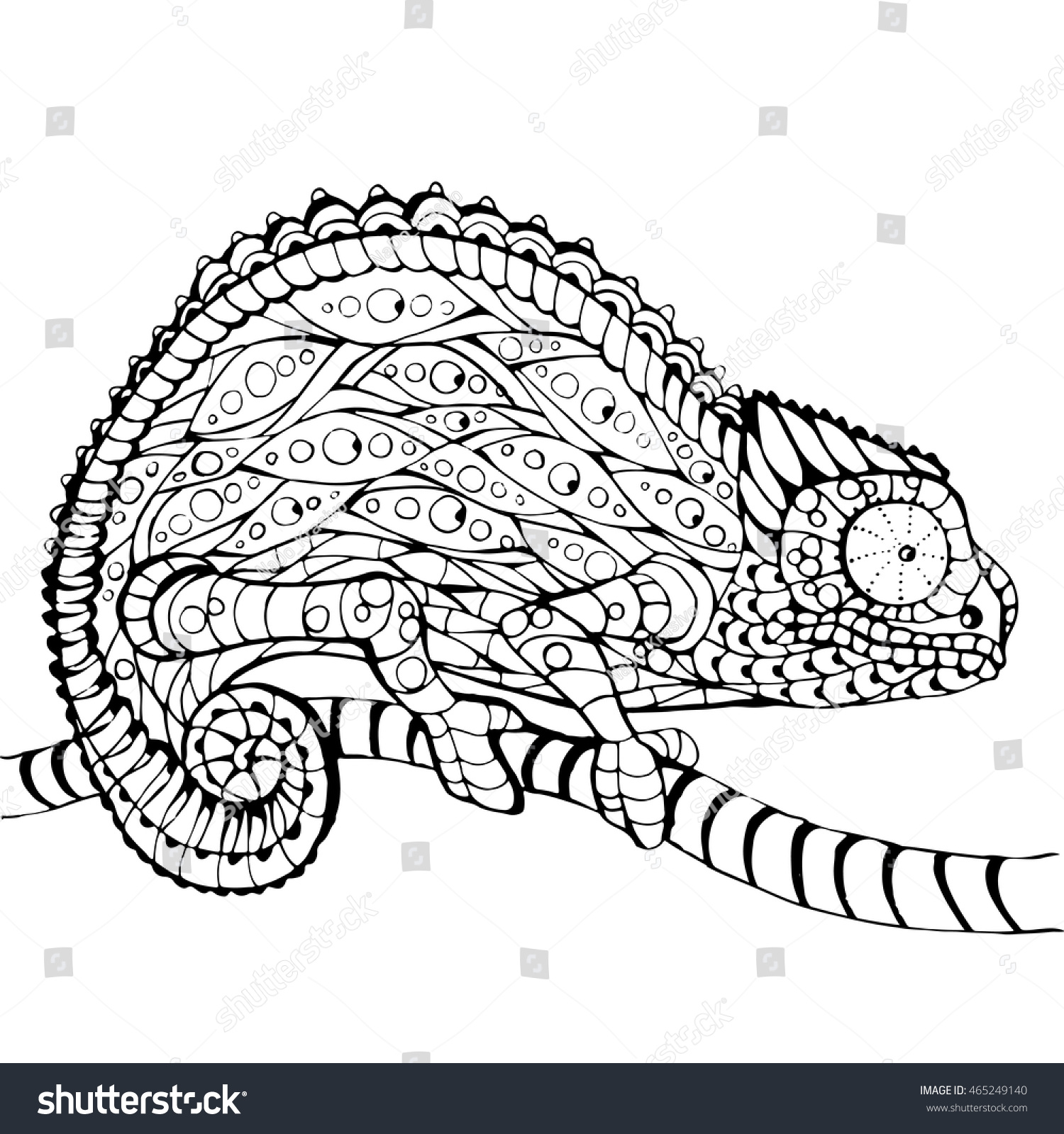 Chameleon Outline Tattoo: Chameleon Coloring Book Page Line Art Stock Vector