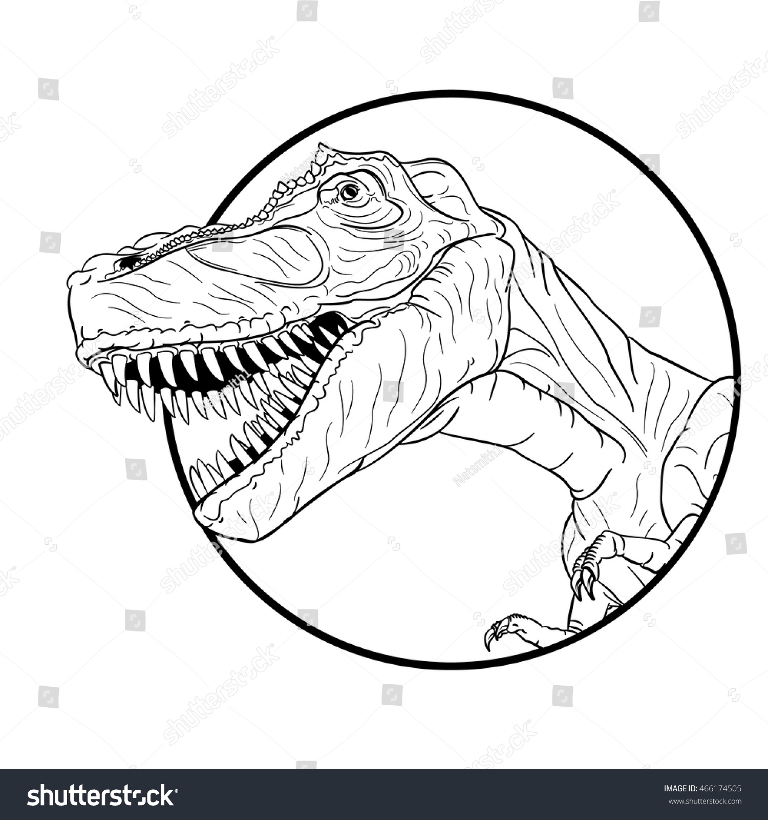 Vector Drawing Lines Review : Vector drawing tyrannosaurus line easy stock