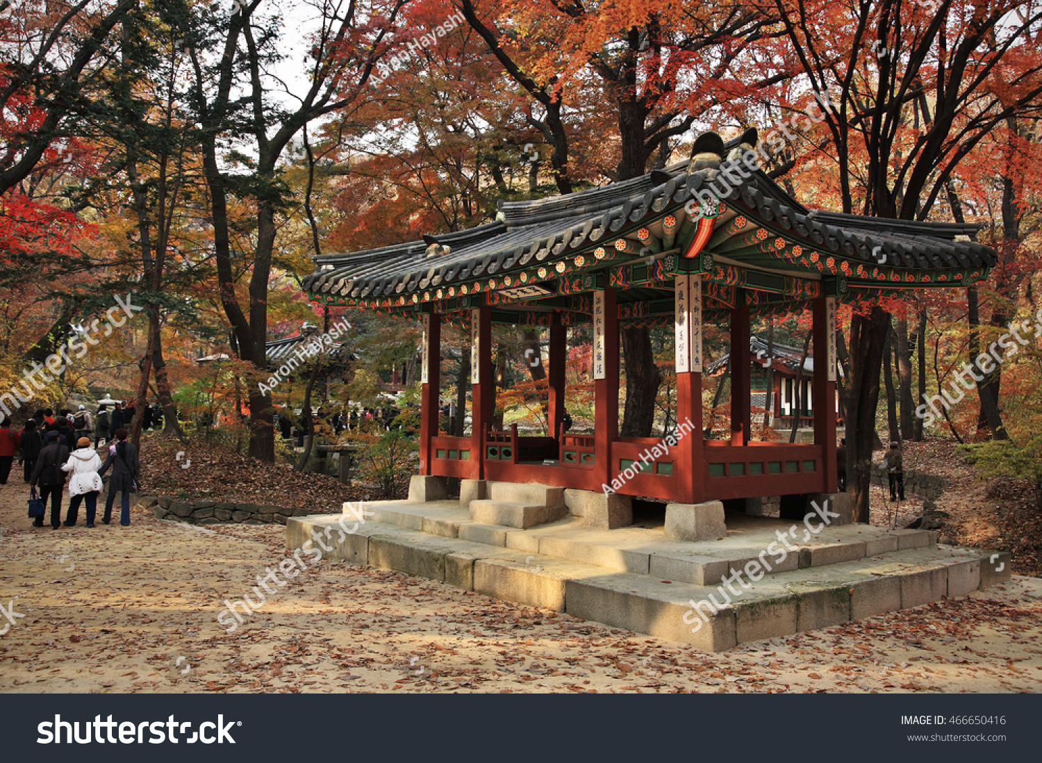 beautiful autumn landscape in the garden of changdeokgung palace in seoul korea changdeokgung palace