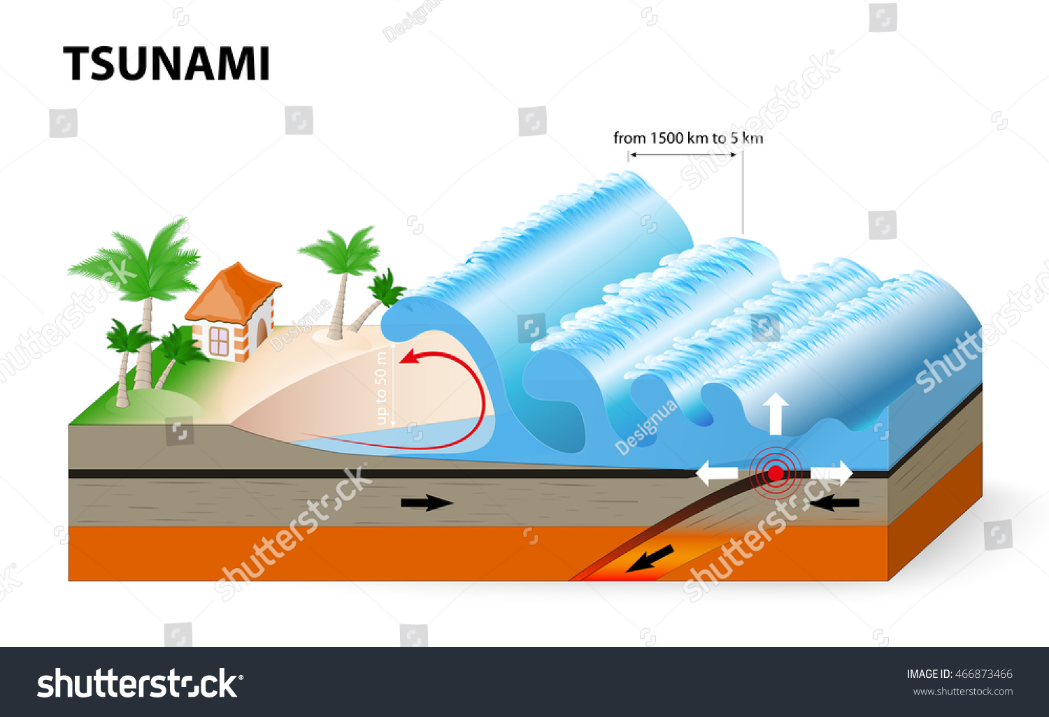 How Fast Can A Tsunami Wave Travel