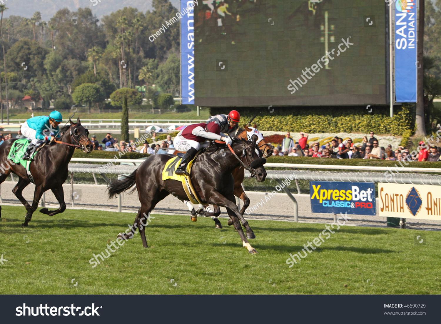 Arcadia Ca 30 Jan Jockey Michael Stock Photo 46690729
