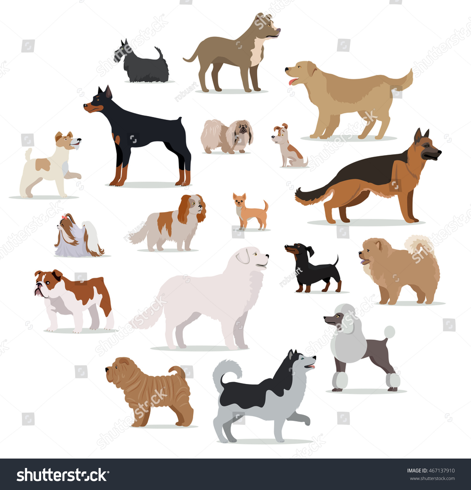 Dogs breed set isolated on white stock vector 467137910 for Different types of puppies breeds