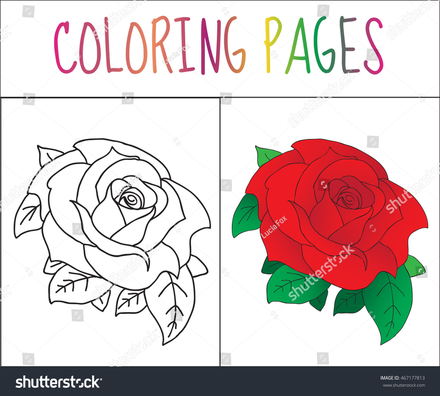 Coloring Book Page Rose Sketch Color Stock Vector 467177813 ...