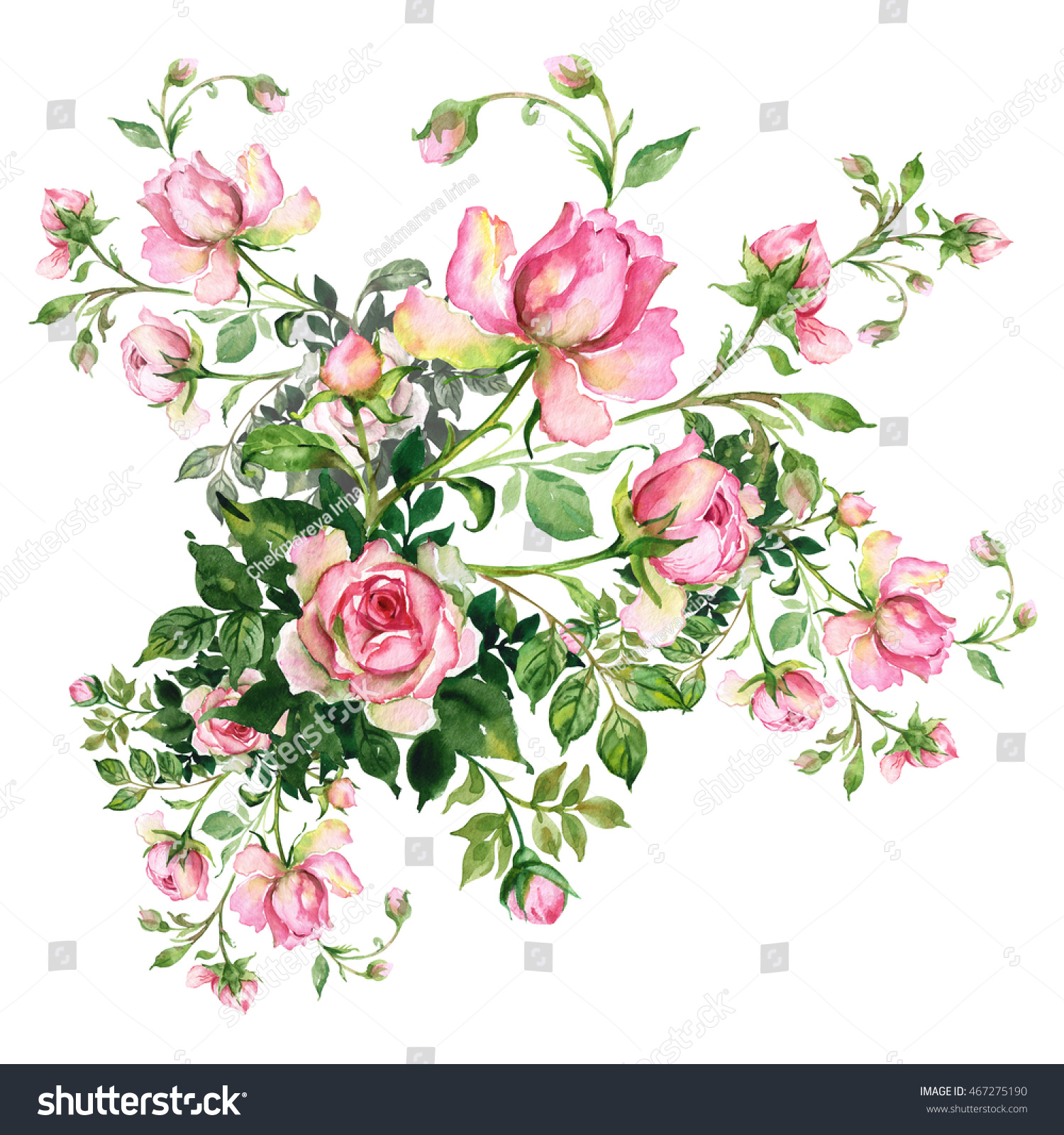 Watercolor Background Rosebud Bouquet Roses Buds Stock Illustration ...