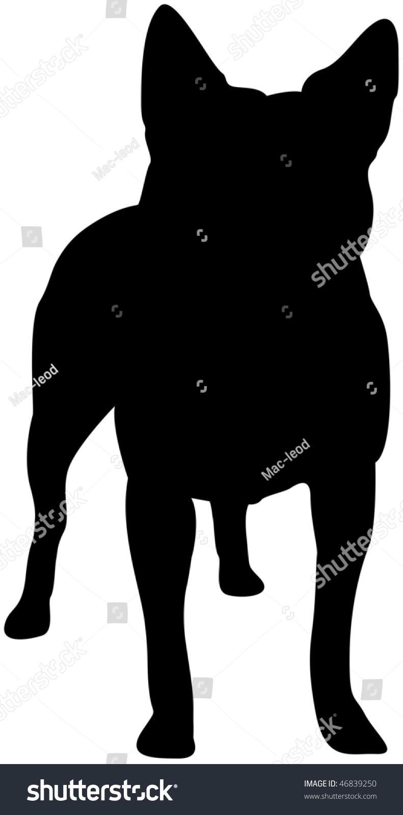 Australian Cattle Dog Silhouette Stock Photo 46839250