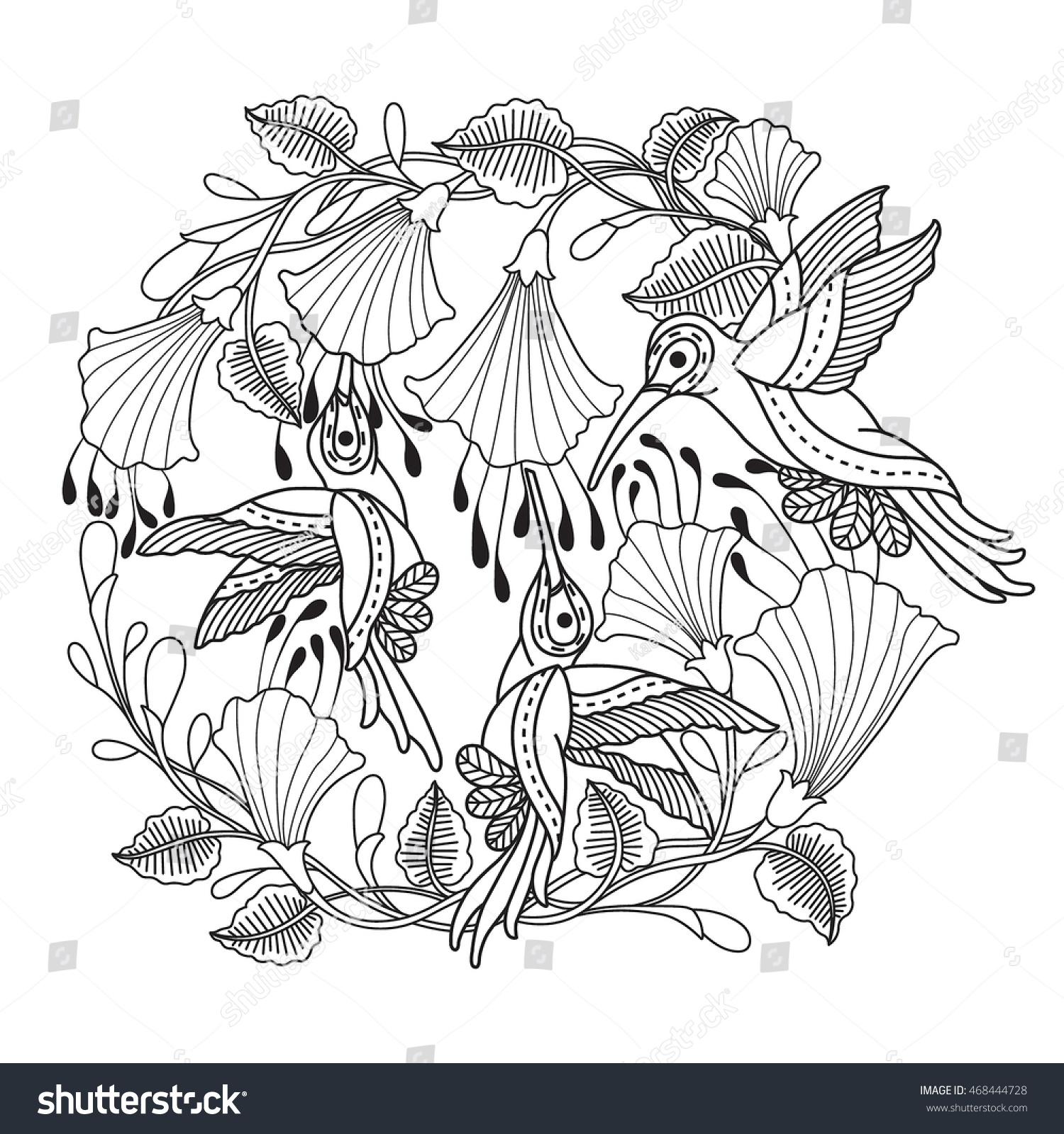 Hand Drawn Hummingbird Flowers Color Book Stock Vector 468444728