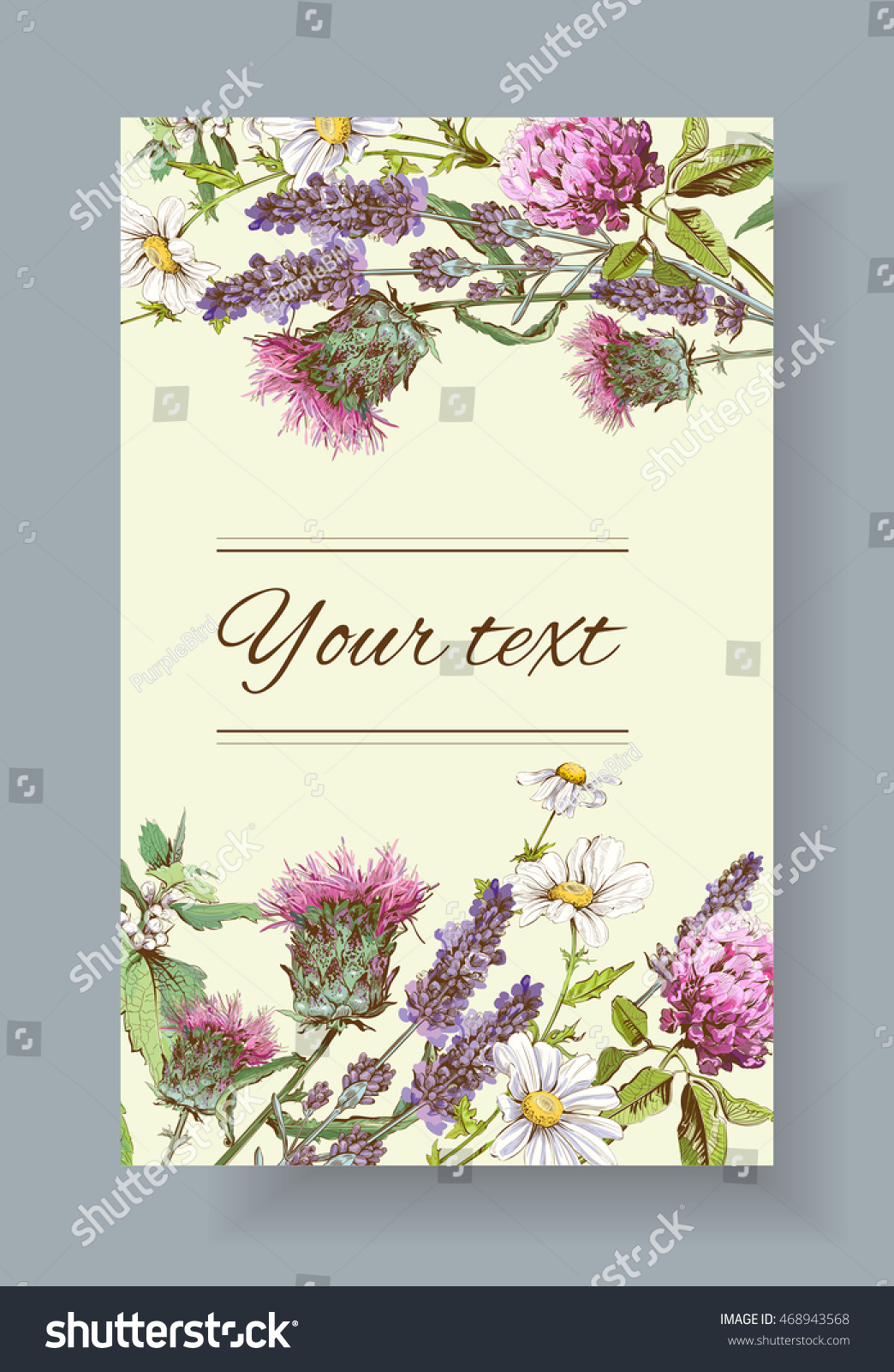 Vector Wild Flowers Herbs Banner Design Stock Vector Royalty Free 468943568