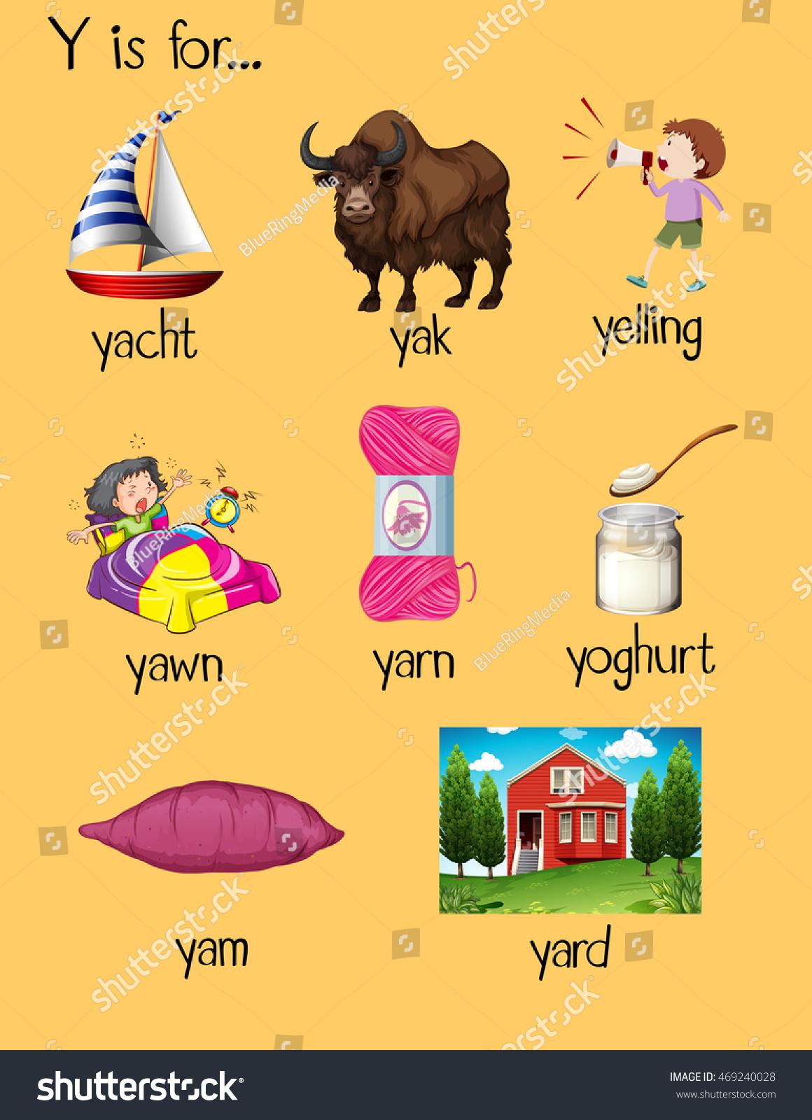 Many Words Begin Letter Y Illustration Stock Vector (Royalty Free