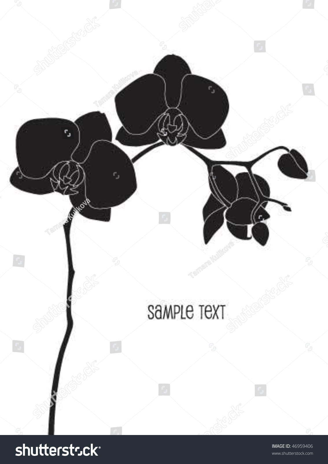 Orchid Clipart Black And White