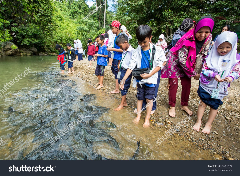 Freshwater fish malaysia - Ranau Sabah Malaysia Nov 14 2015 Unidentified Student Playing With Freshwater Fish Called Ikan Kelah At Moroli River Sabah Malaysia