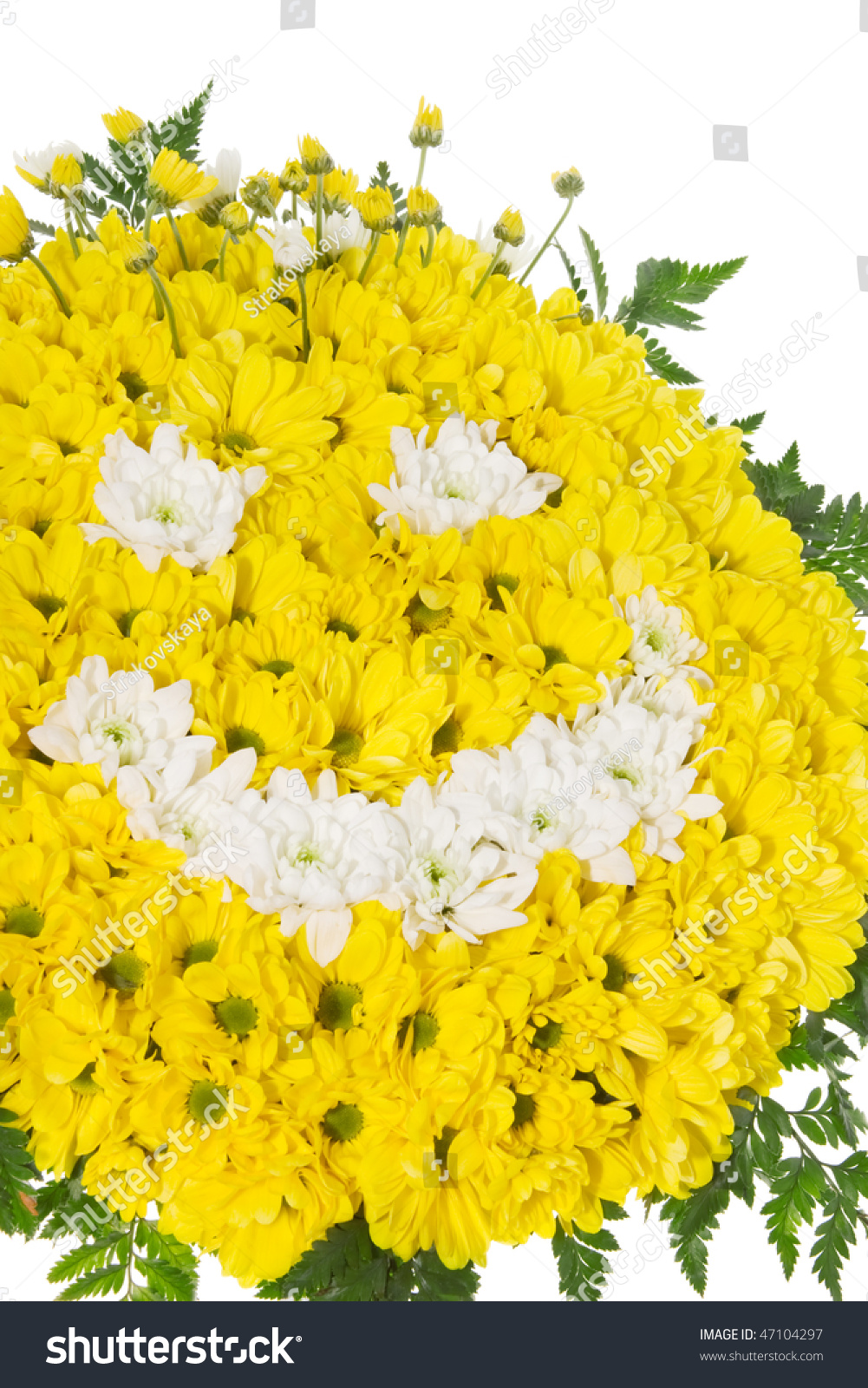 Flower Yellow Smiley Face Stock Photo Edit Now 47104297 Shutterstock