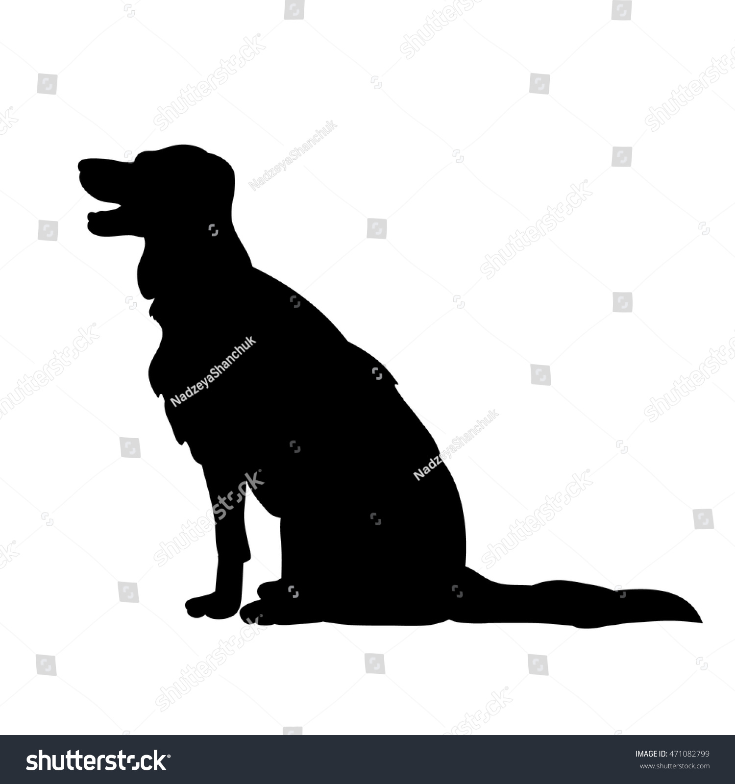 isolated on a white backgroundthe silhouette of a dog sitting