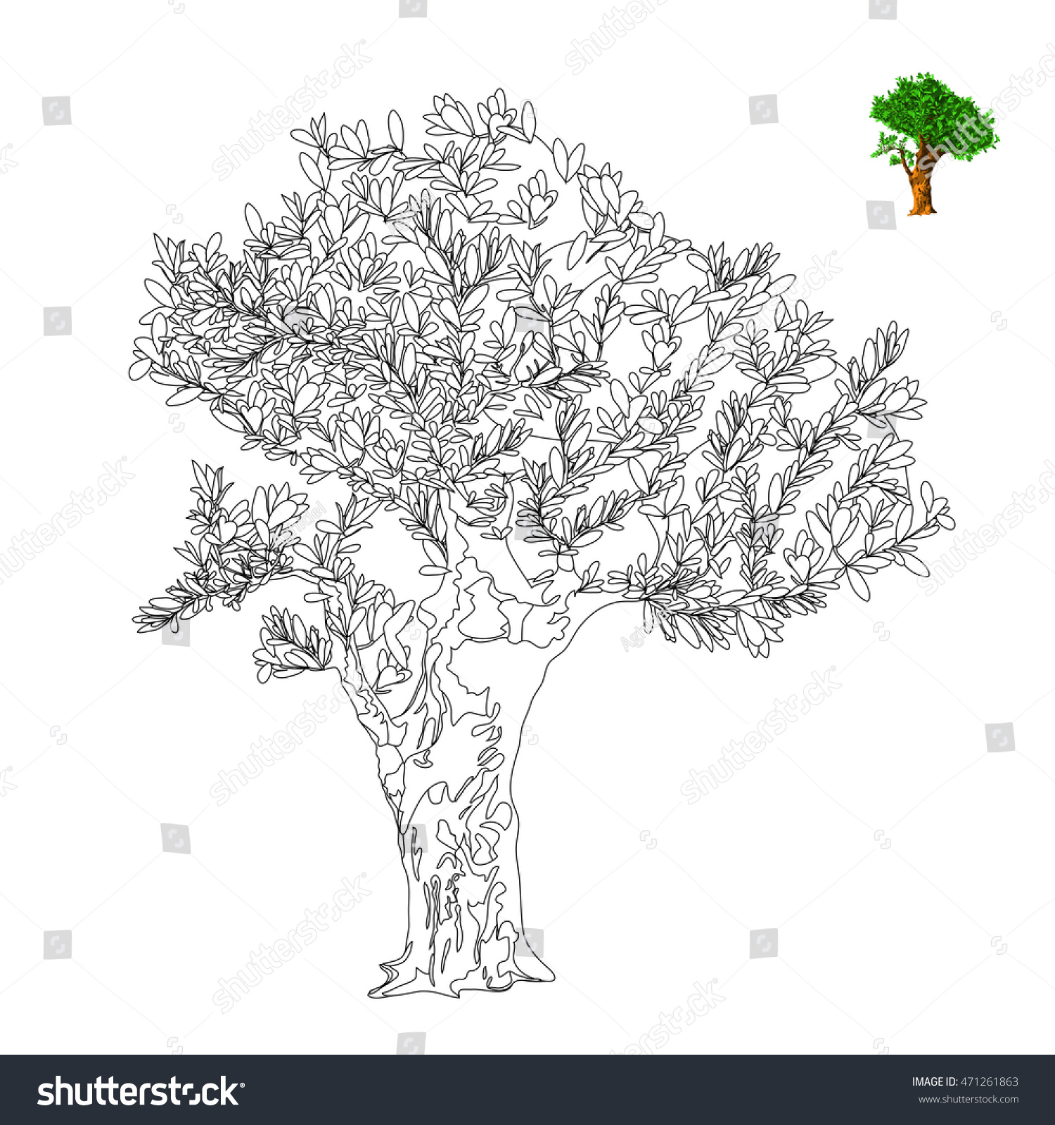 olive tree vector illustration antistress coloring page