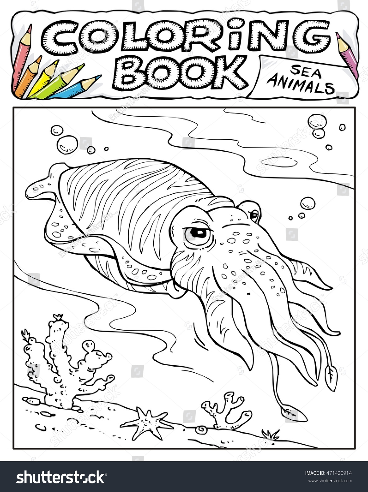 stock vector cuttlefish squid coloring book pages sea animals collection page no