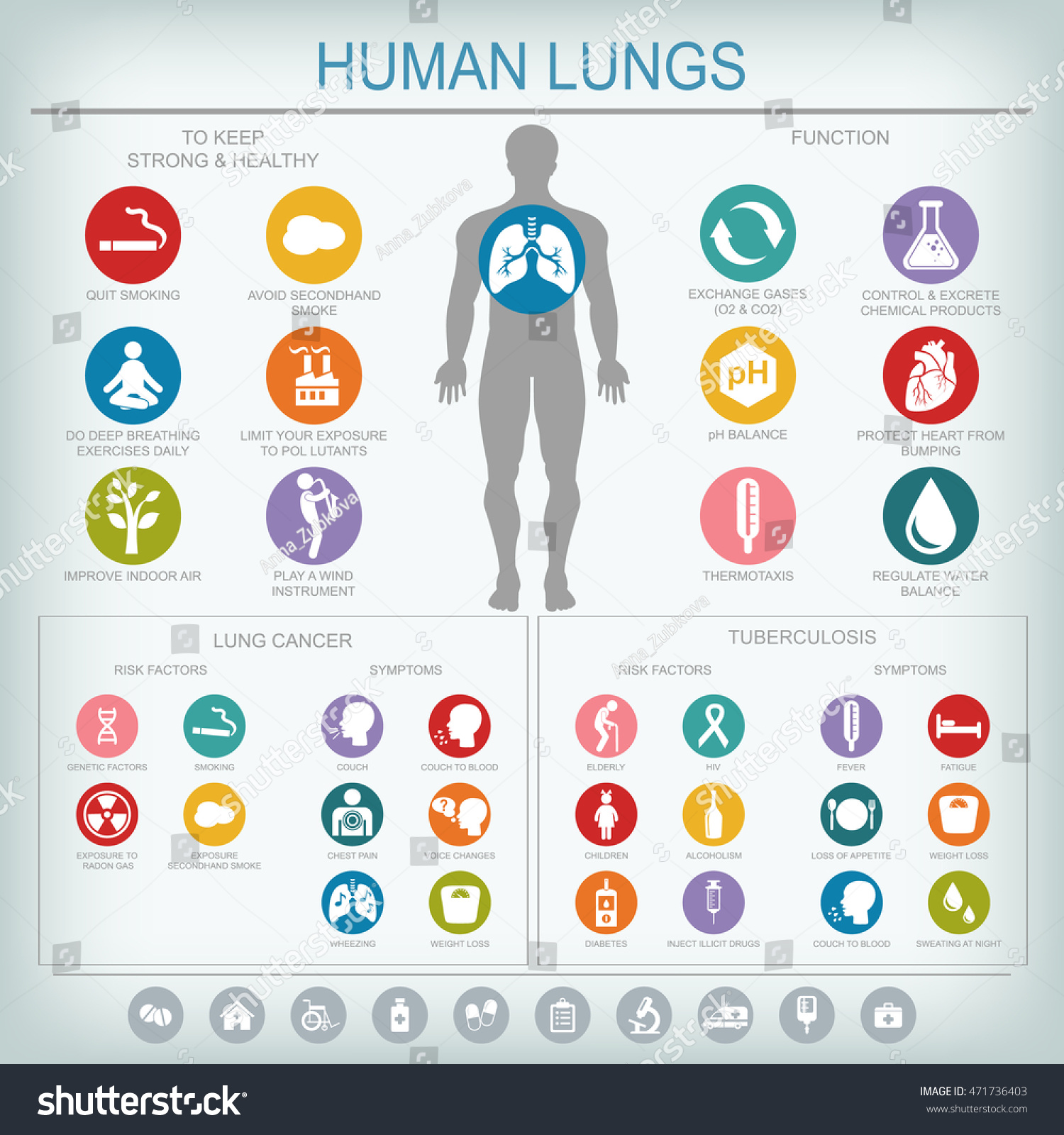 Medical Infographics Lungs Function Health Lung Stock Illustration