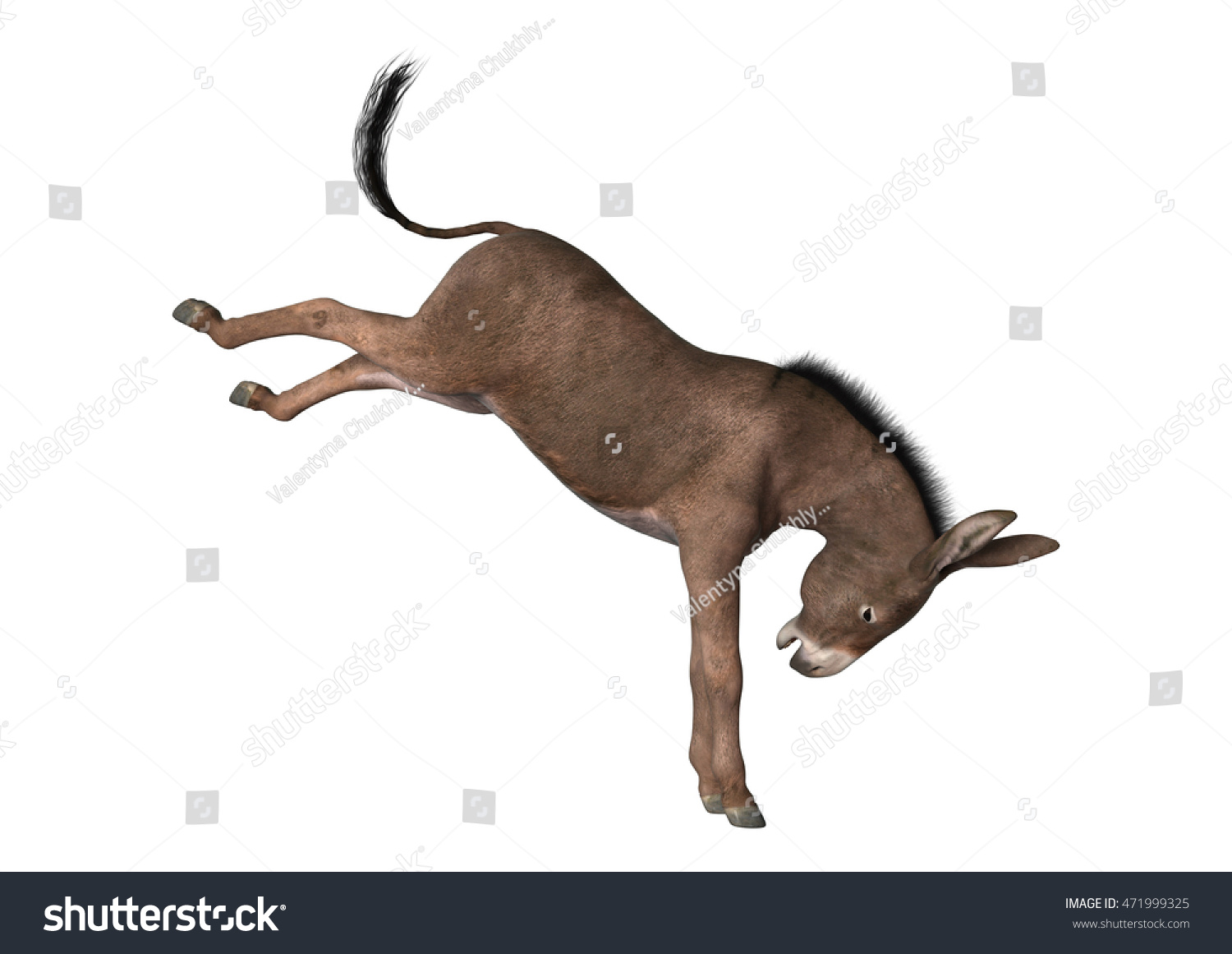 3D rendering of a donkey isolated on white background | EZ Canvas