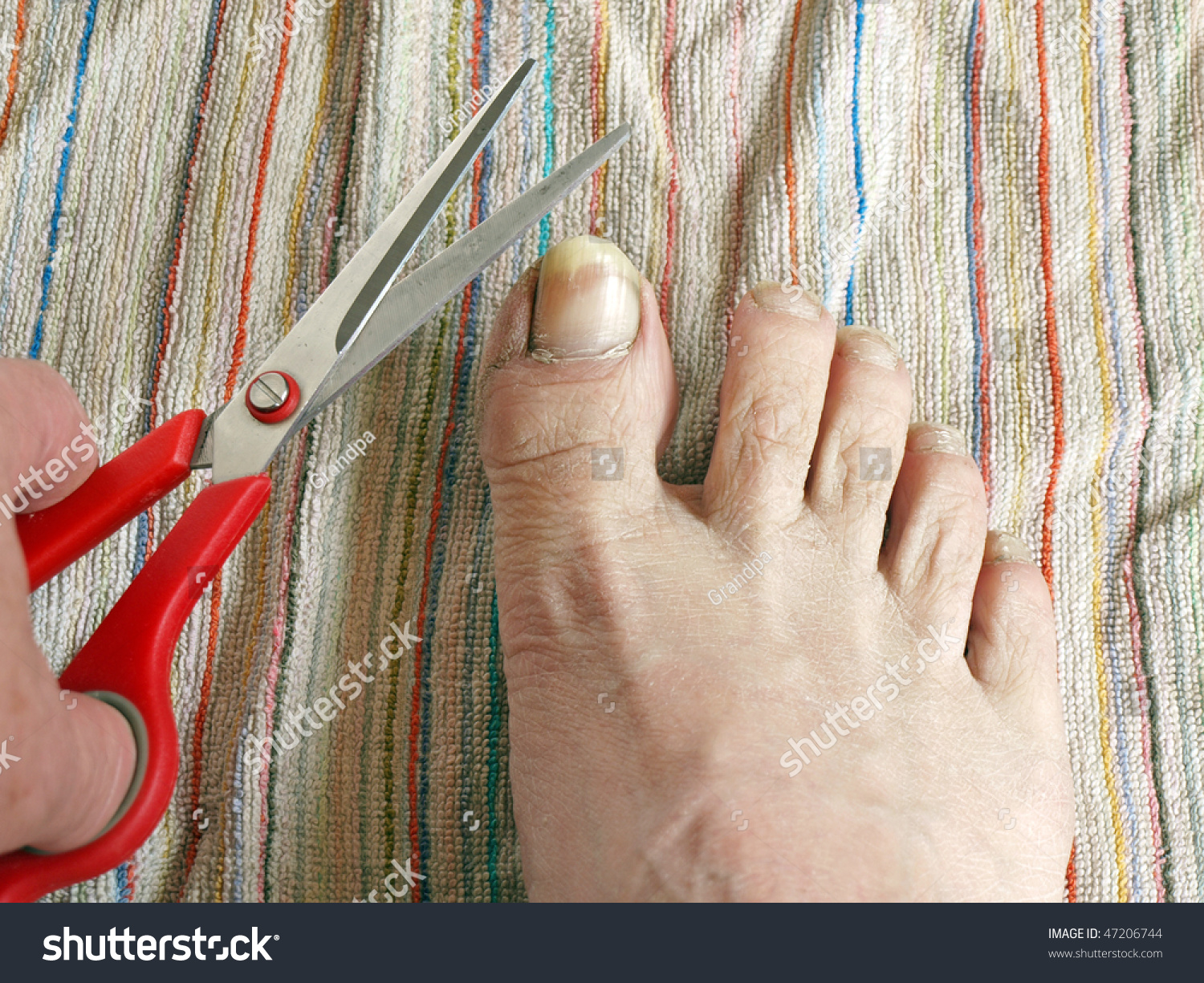Long Toe Nails Hand Scissors Stock Photo (Royalty Free) 47206744 ...
