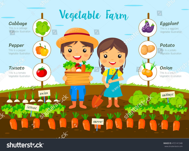 Vegetable Garden Farm Farmers Harvest On Stock Vector 472141348