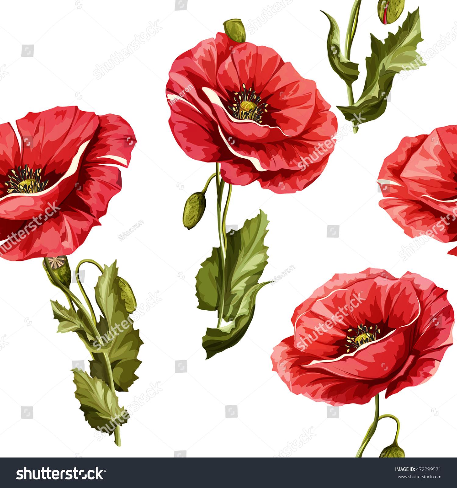 Poppy Flowers Seamless Background Pattern Poppy Stock Vector
