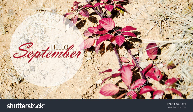 Hello September Wallpaper Autumn Background Red Stock Photo 472410706 - Shutt...