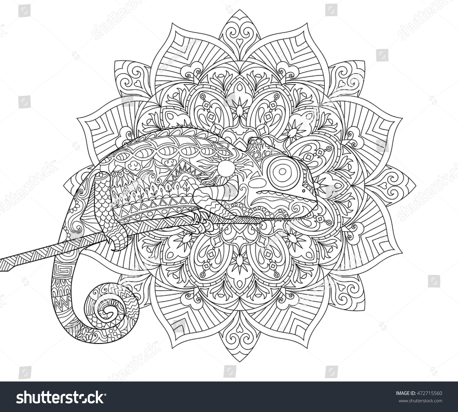 Chameleon For Adult Antistress Coloring Page Black And White Hand Drawn Doodle Book