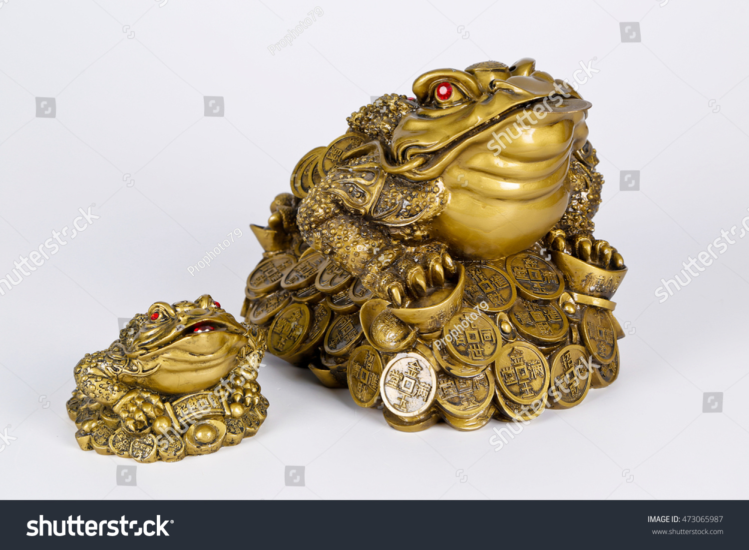 Good Luck Frog Frog Lucky Symbol Stock Photo Edit Now 473065987
