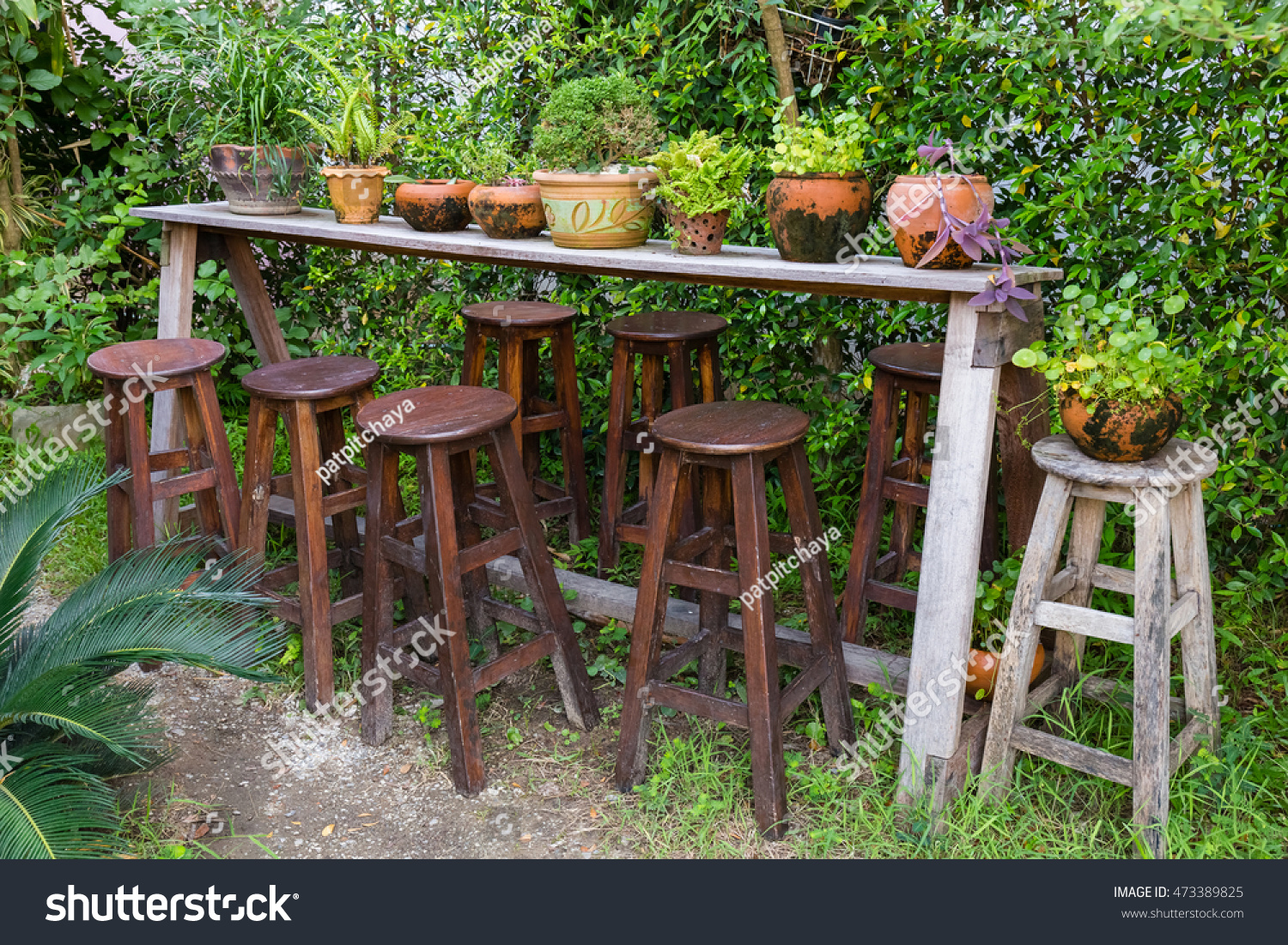 Decorated plants on wood shelf with many stools in the garden | EZ ...