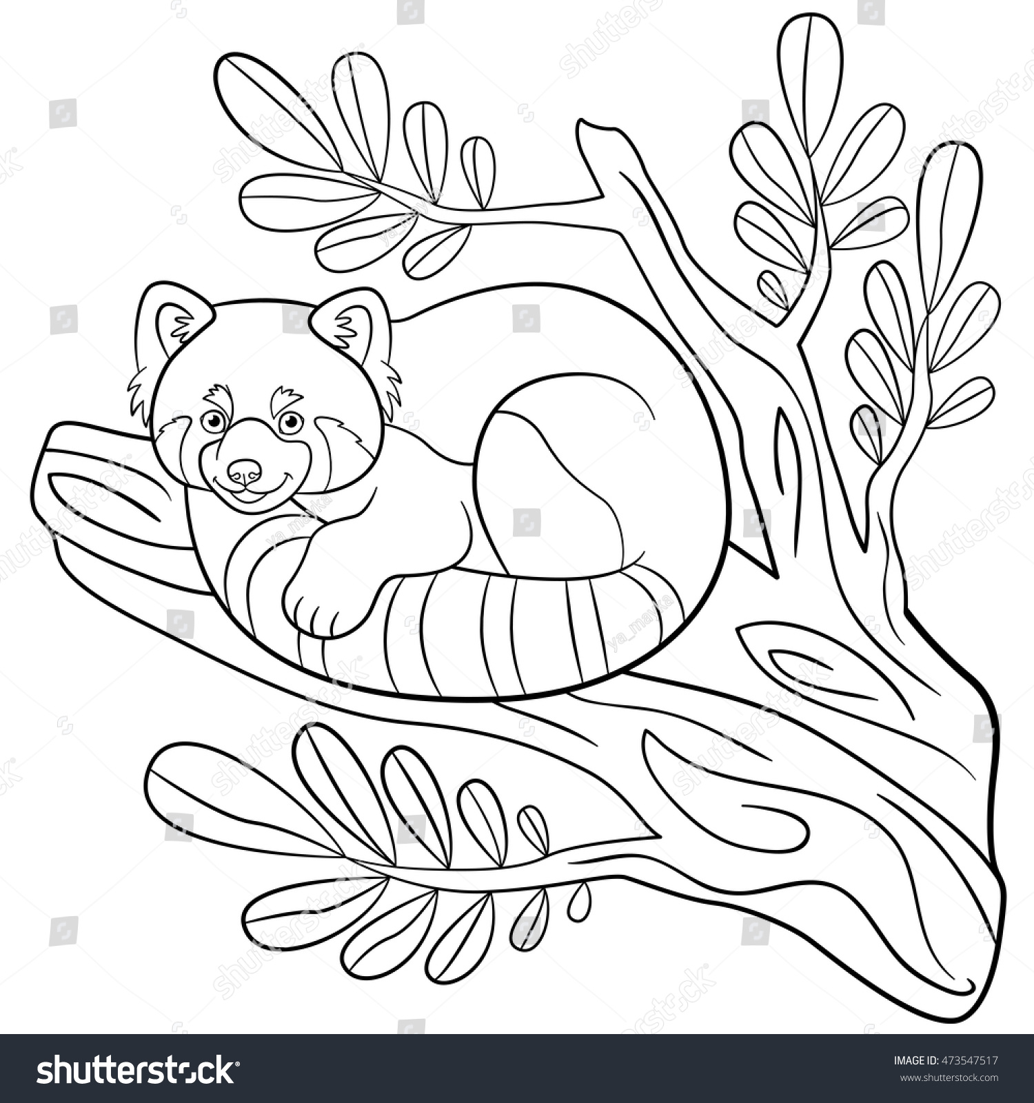 Red Panda Coloring Page Coloring Pages Little Cute Red Panda Stock Vector 473547517