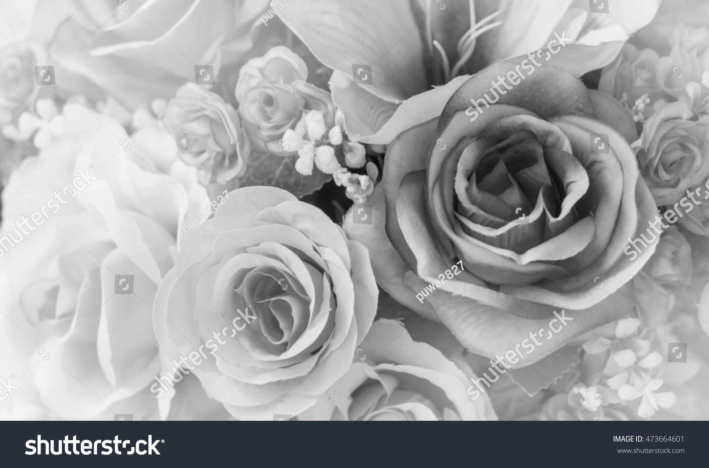 Beautiful black white rose flower closeup stock photo edit now beautiful black and white rose flower close up izmirmasajfo