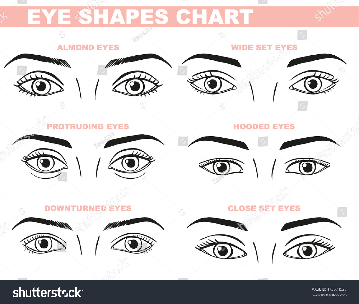 eyes face chart blank template makeup stock vector