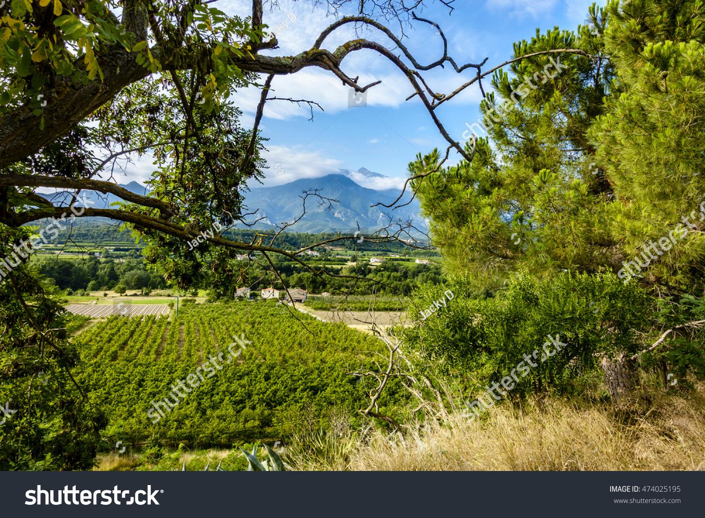 Massif pic du Canigou.  FRANCE- 9 juillet 2016. Le Canigou est le sommet oriental des Pyrénées, le Canigou, il culmine à 2 784,66 mètres.