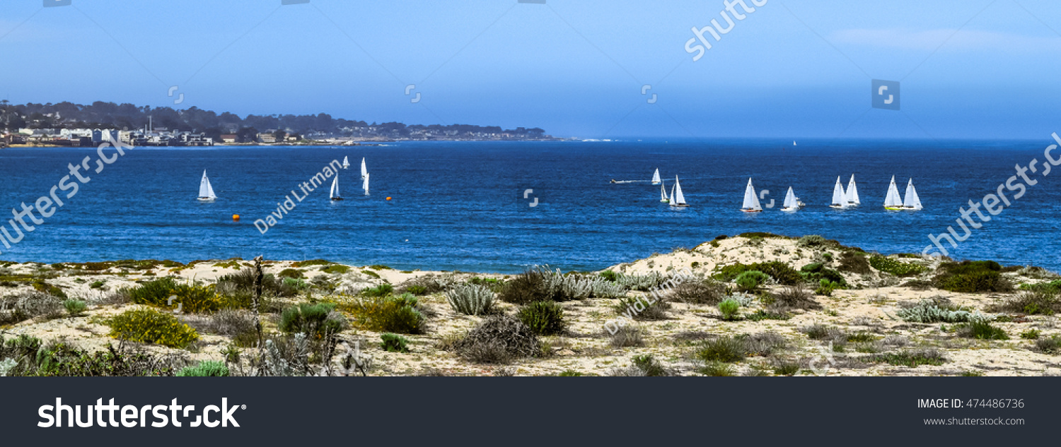Sailboats sail in Monterey Bay, California, the coastal sand dunes in the foreground and Fisherman's Wharf and Lover's Point (Pacific Grove) in the background.