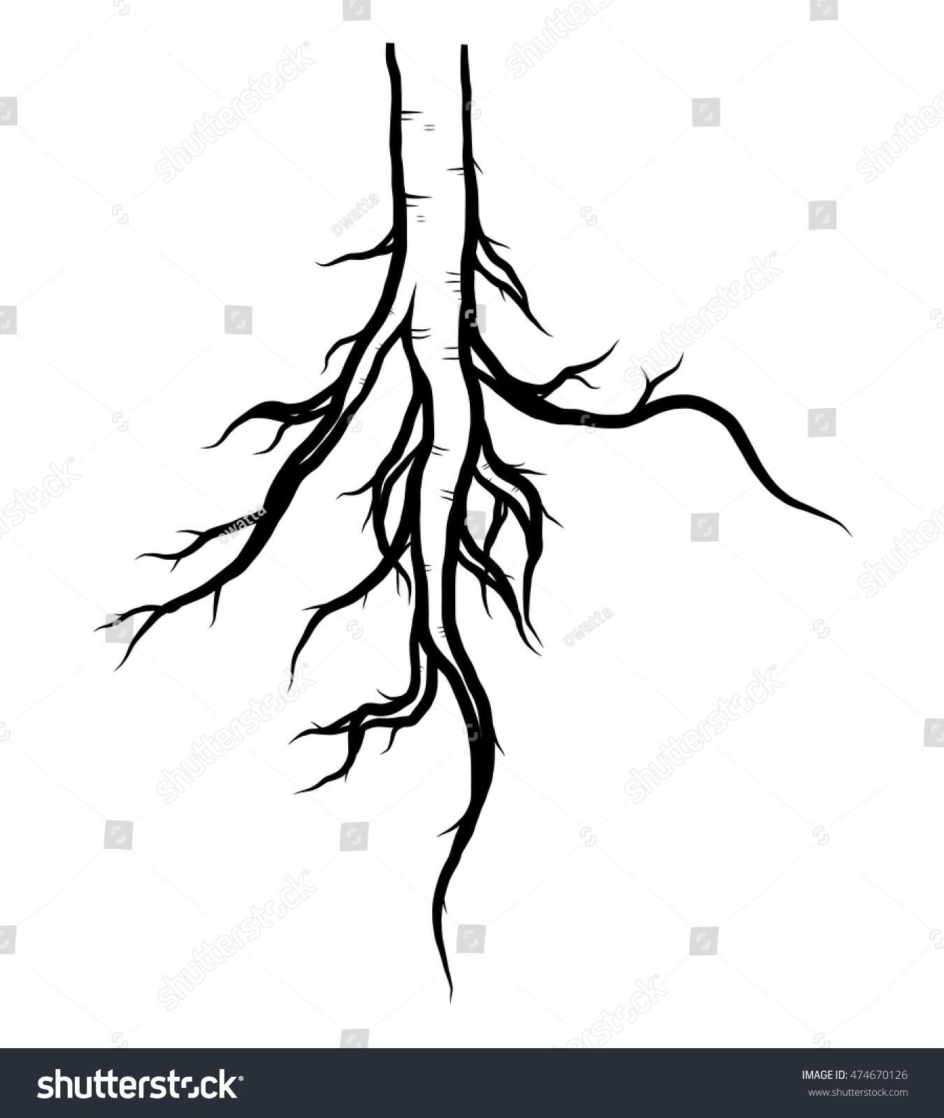 Tree Root Cartoon Vector Illustration Black Stock Vector 474670126
