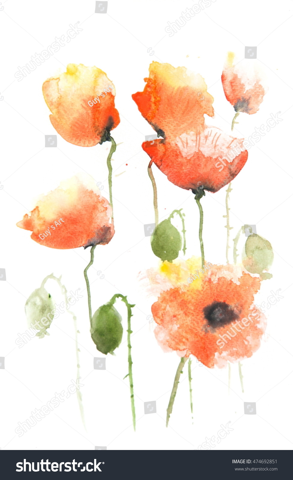 Stylized Poppies On White Flower Painting Stock Illustration