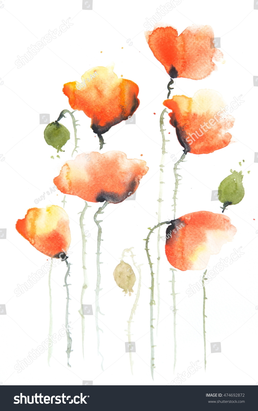 Royalty Free Stock Illustration Of Stylized Poppies On White Flower