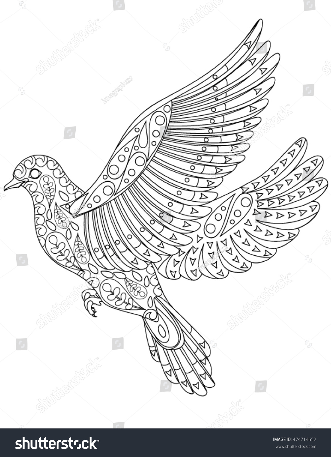stock vector hand drawn bird coloring page